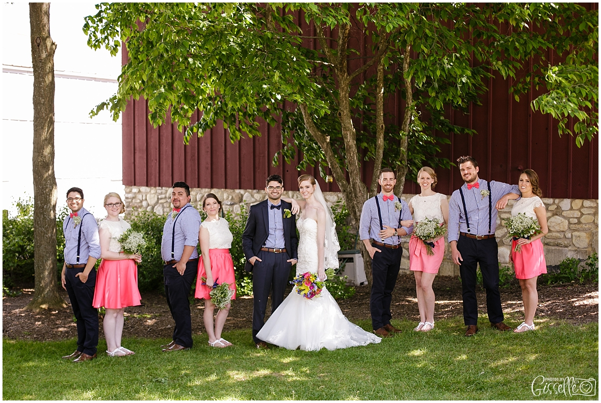 Elgin_Streamwood_Wedding33.jpg
