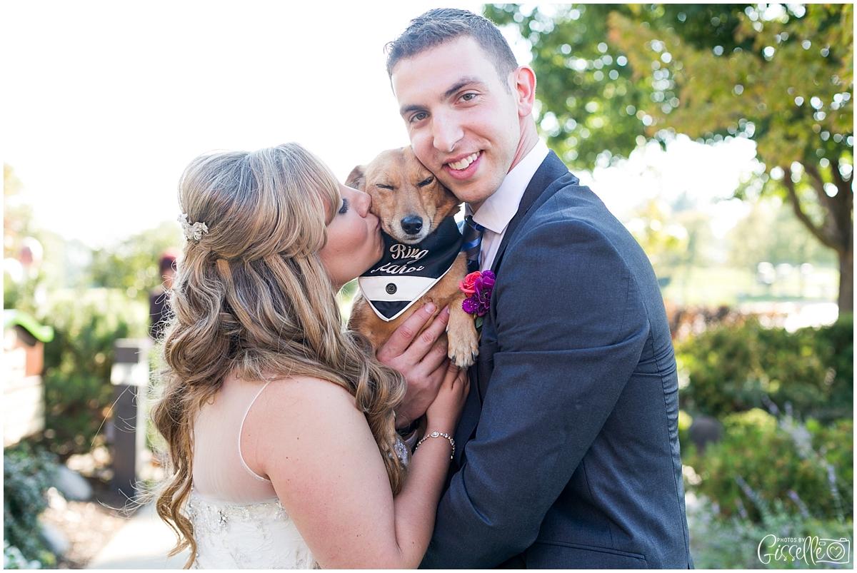 Schaumburg-wedding-photographer_0026.jpg