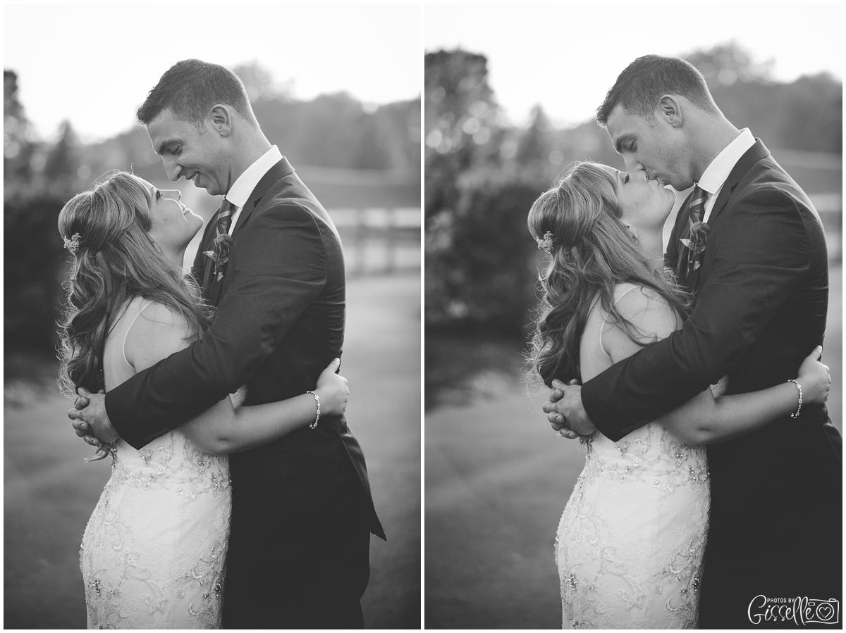 Schaumburg-wedding-photographer_0035.jpg