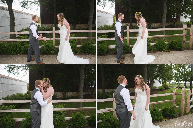 Hoosier Grove Barn Wedding_0260.jpg