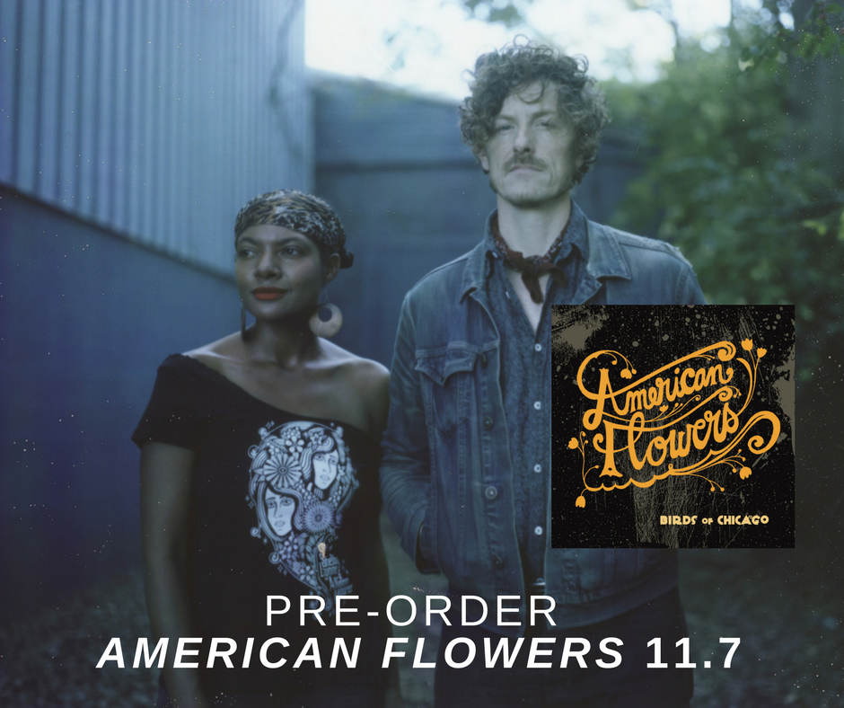 https://birdsofchicago.bandcamp.com/album/american-flowers