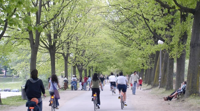 bicycles-lucca.jpg