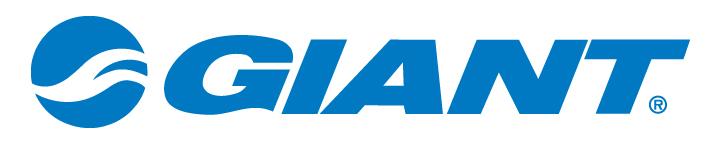 Giant-Corp-Logo-BLUE (2).jpg