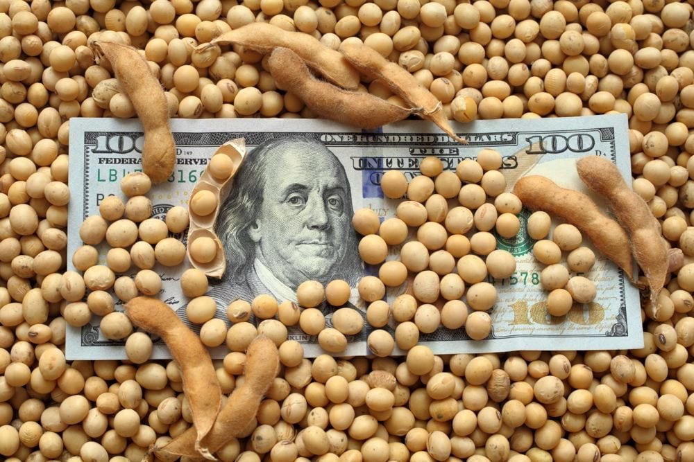 money-US-soybeans-GetttyImages.jpg