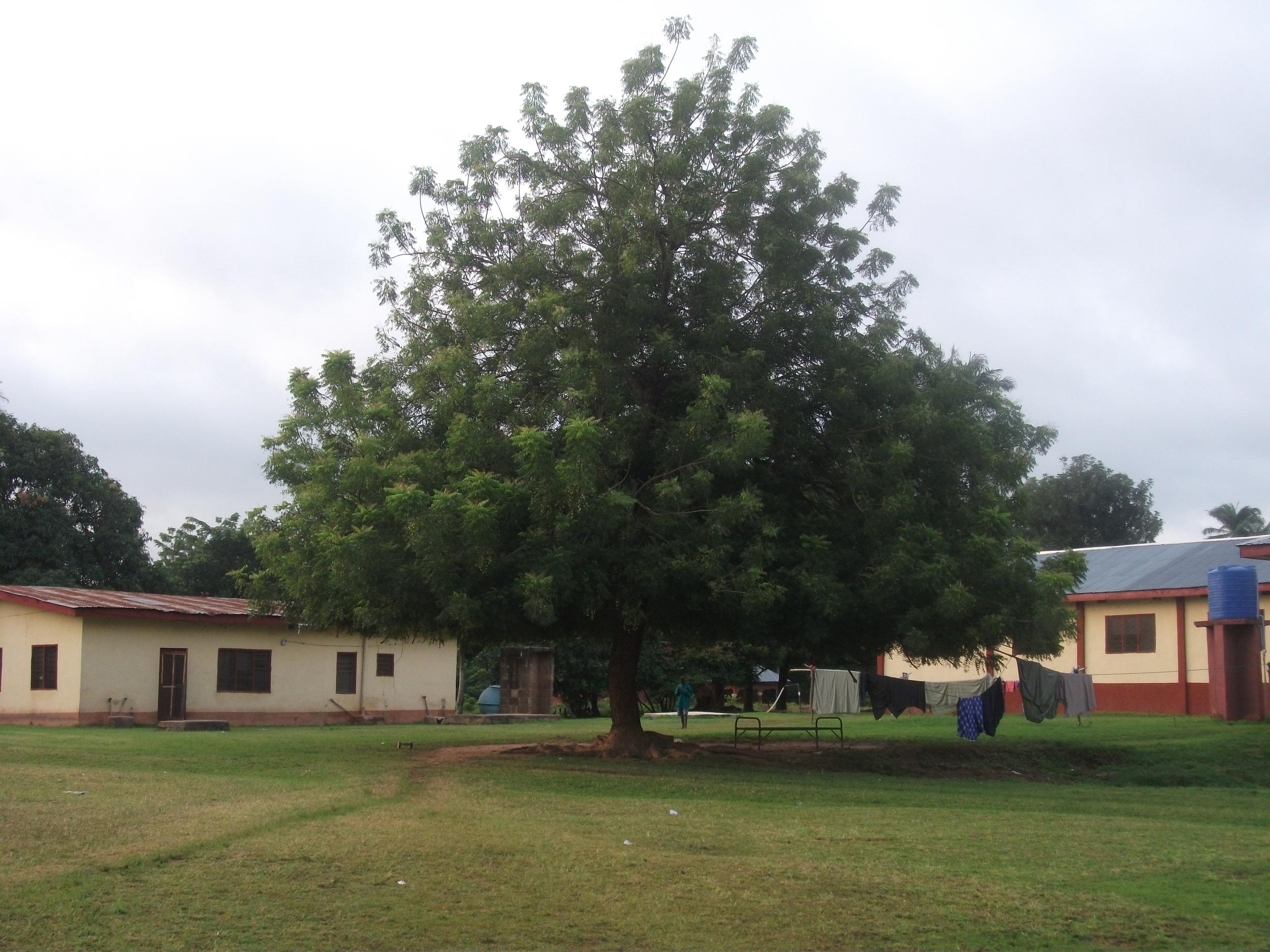 Nigeria 2010-241.JPG