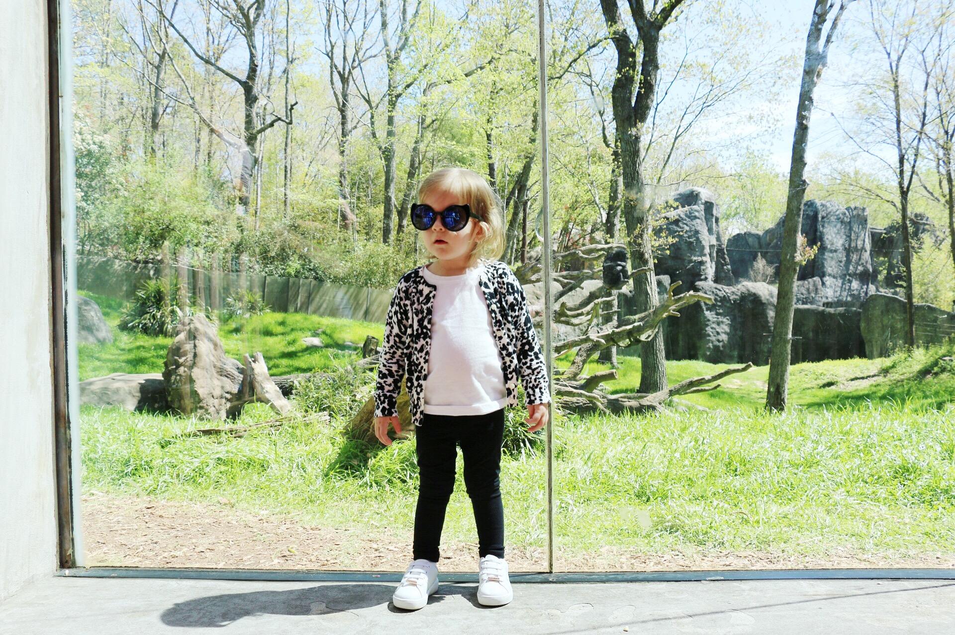 toddler-fashion-j-crew-zoo