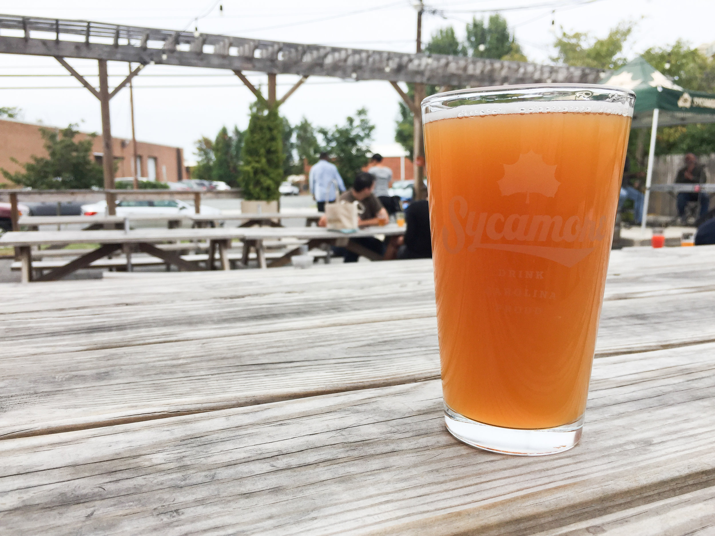 sycamore-brewing-south-end-charlotte-nc-apricot-wheat