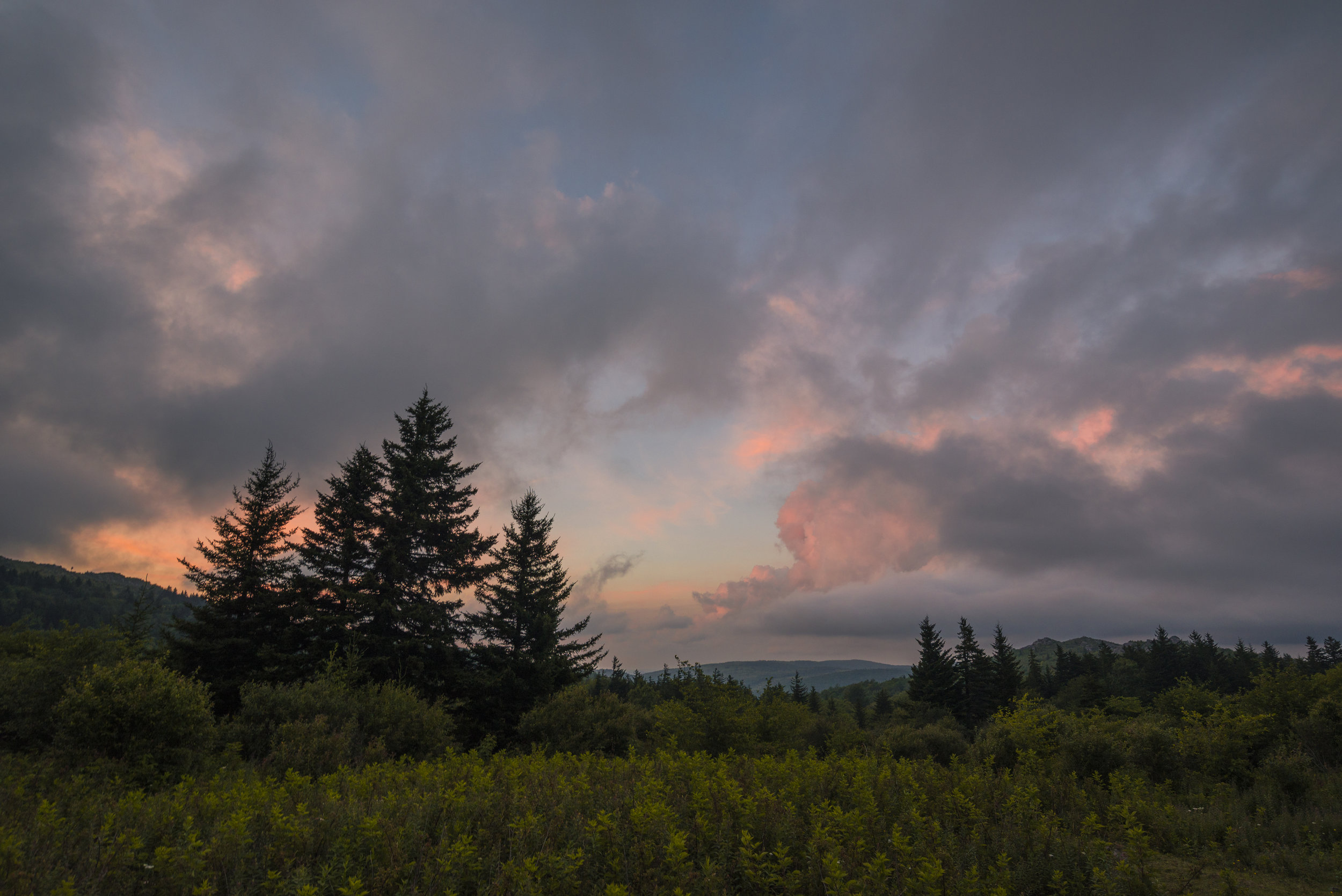Sunset and Spruce Forest, Grayson Highlands, Virginia