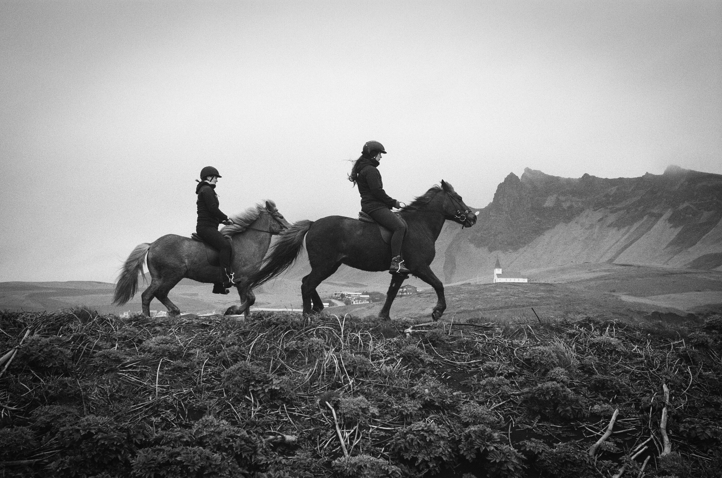 Icelandic Horses in Vik(Black and White Film)