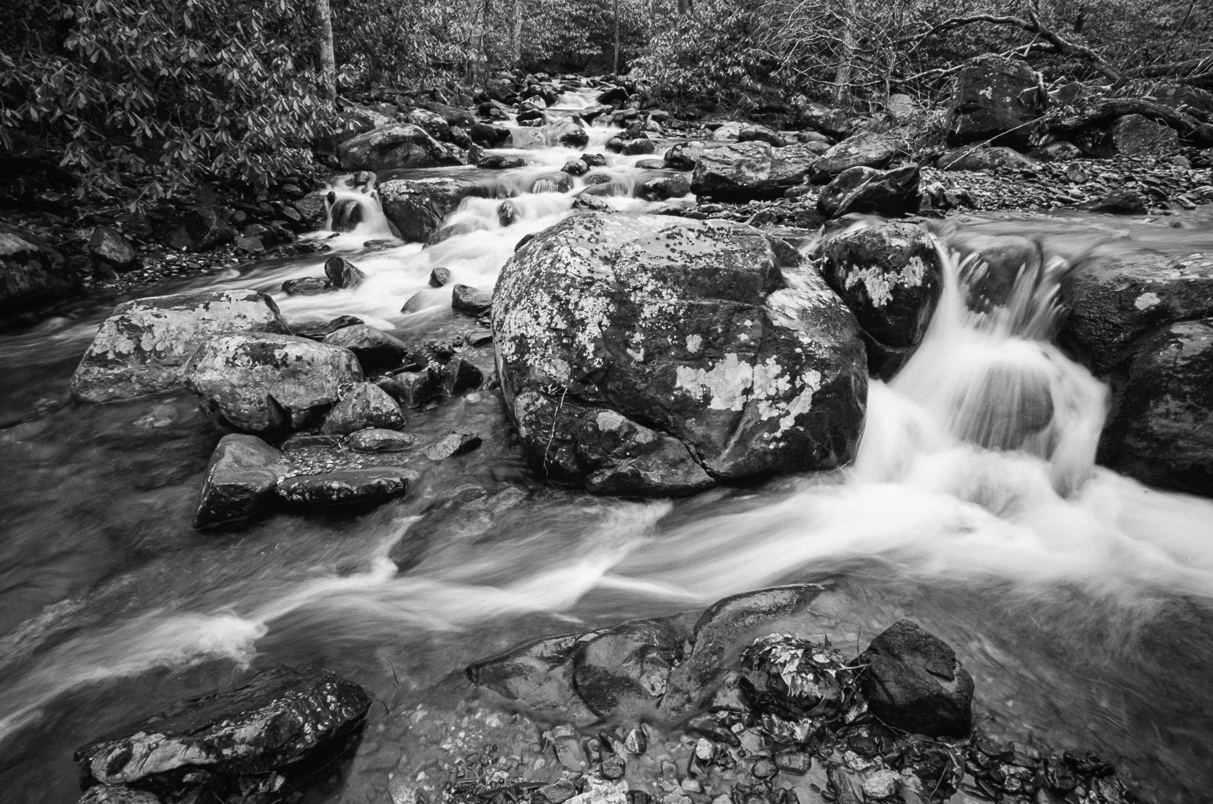 Roaring Creek on Black and White Film