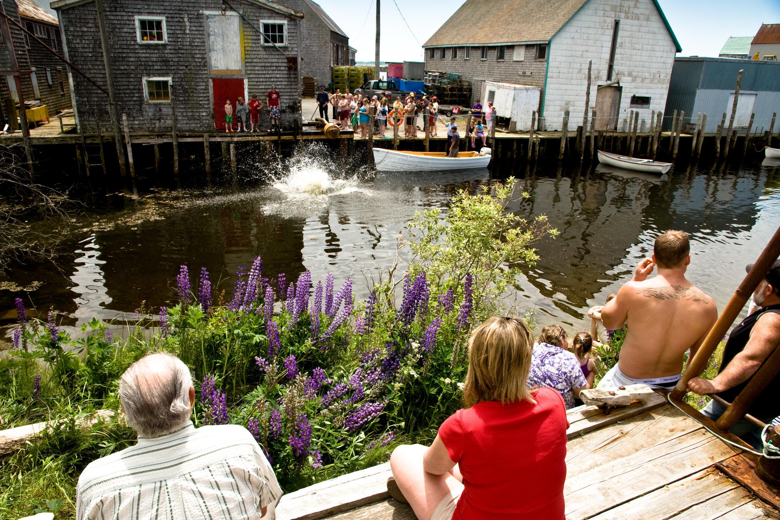 """""""Greasy-Pole"""" Contest, Canada Day, Seal Cove"""
