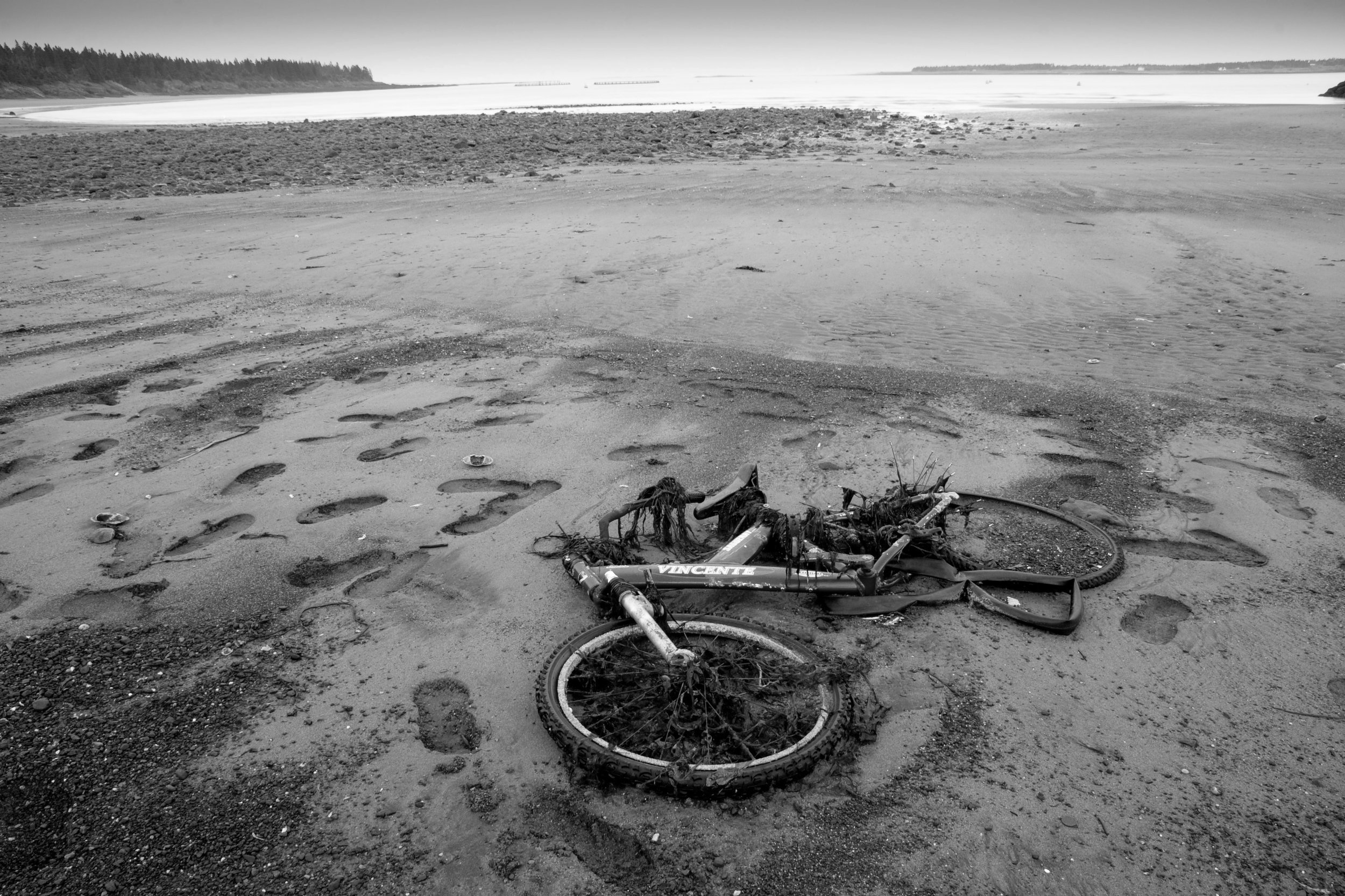Washed up bicycle, Seal Cove Beach