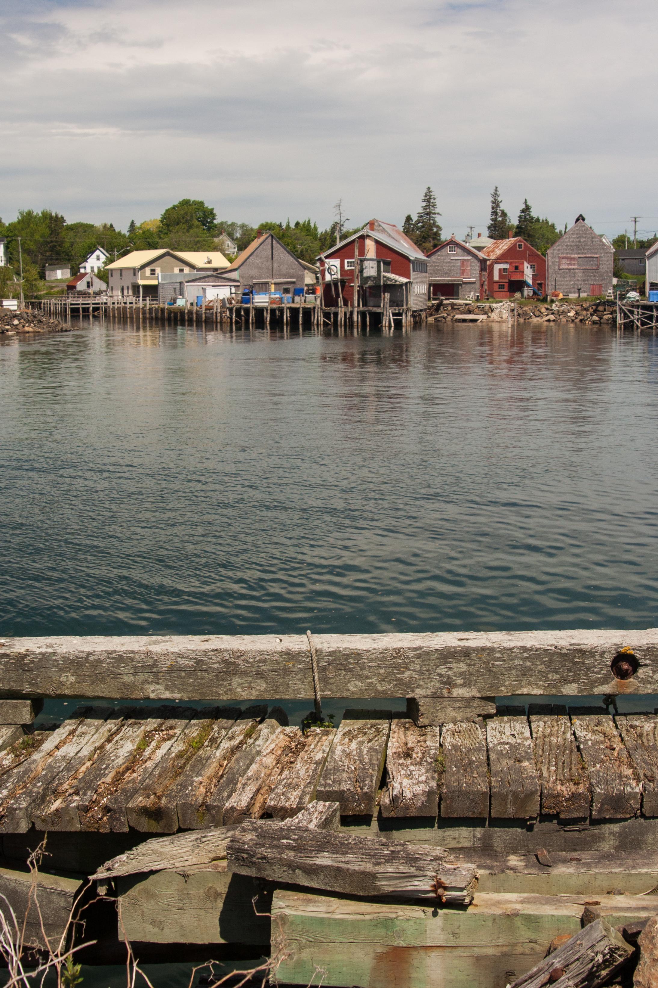 Seal Cove Dock