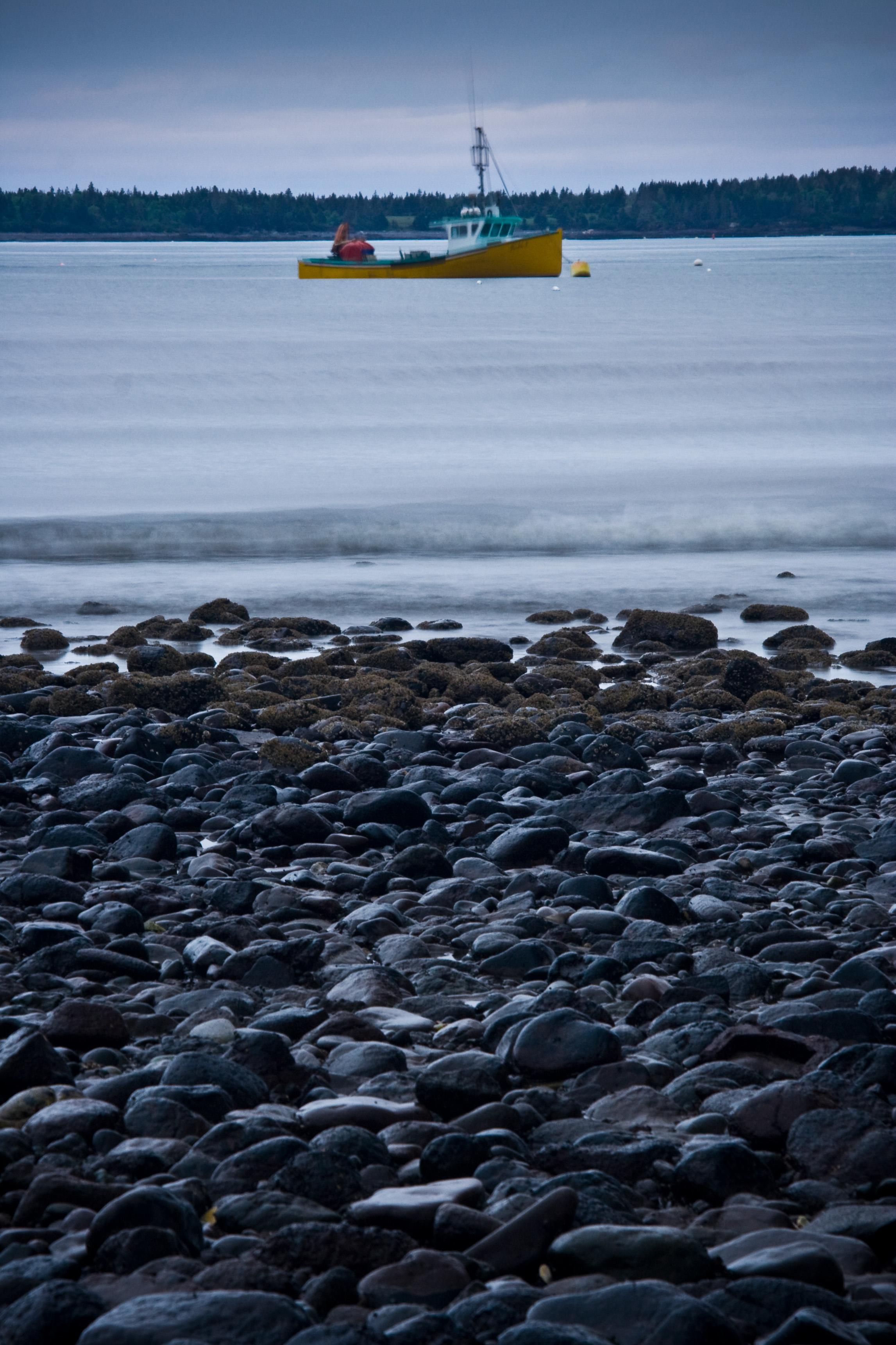 Seal Cove Beach at Night