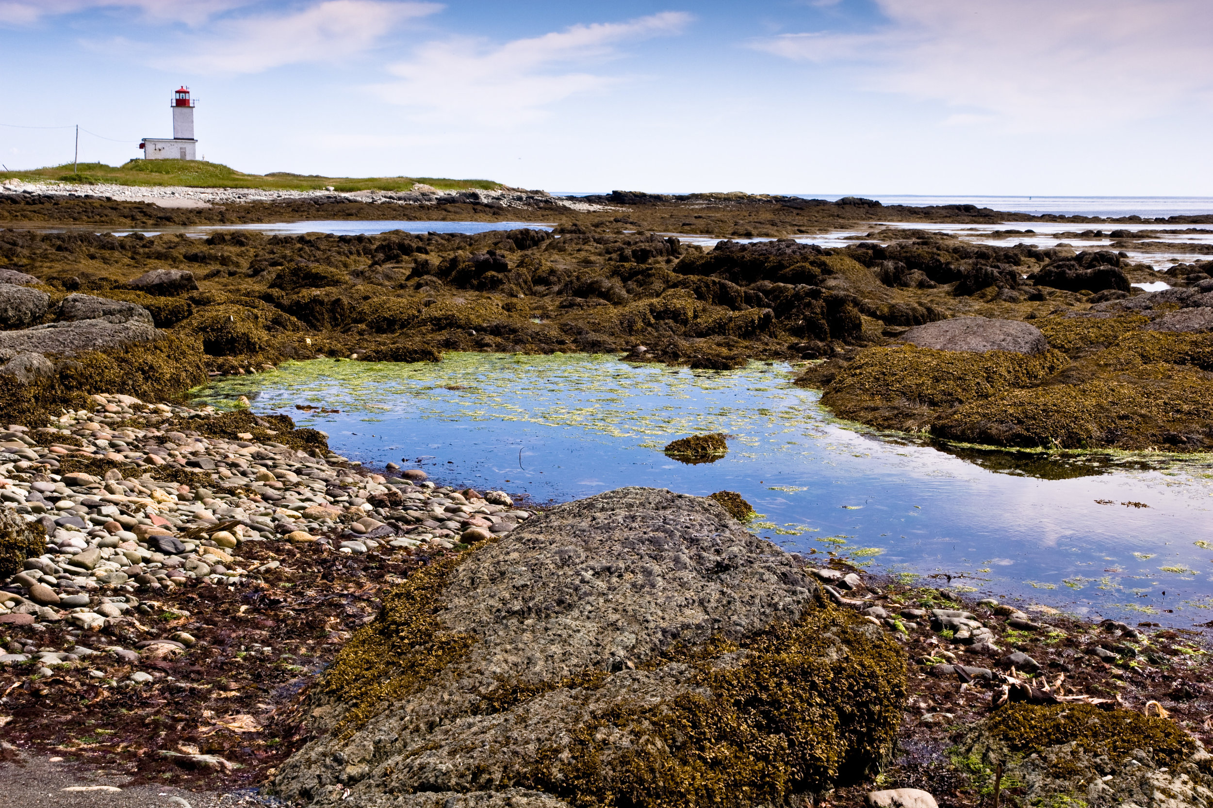 White Head island Lighthouse and Tidal Pool