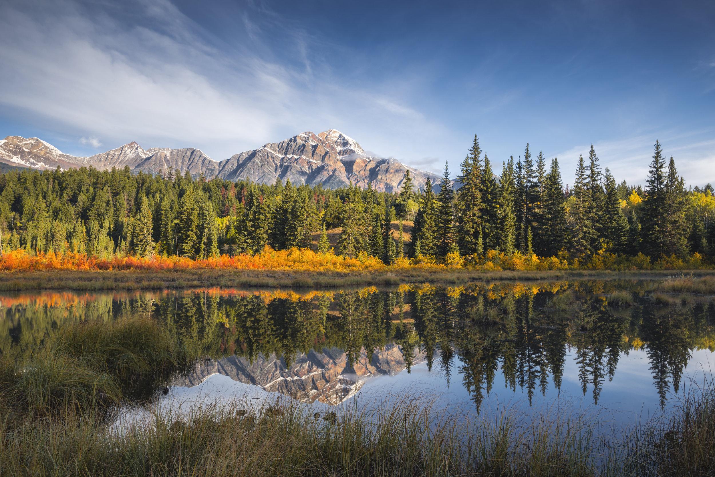 Pyramid Mountain in Autumn, Jasper National Park