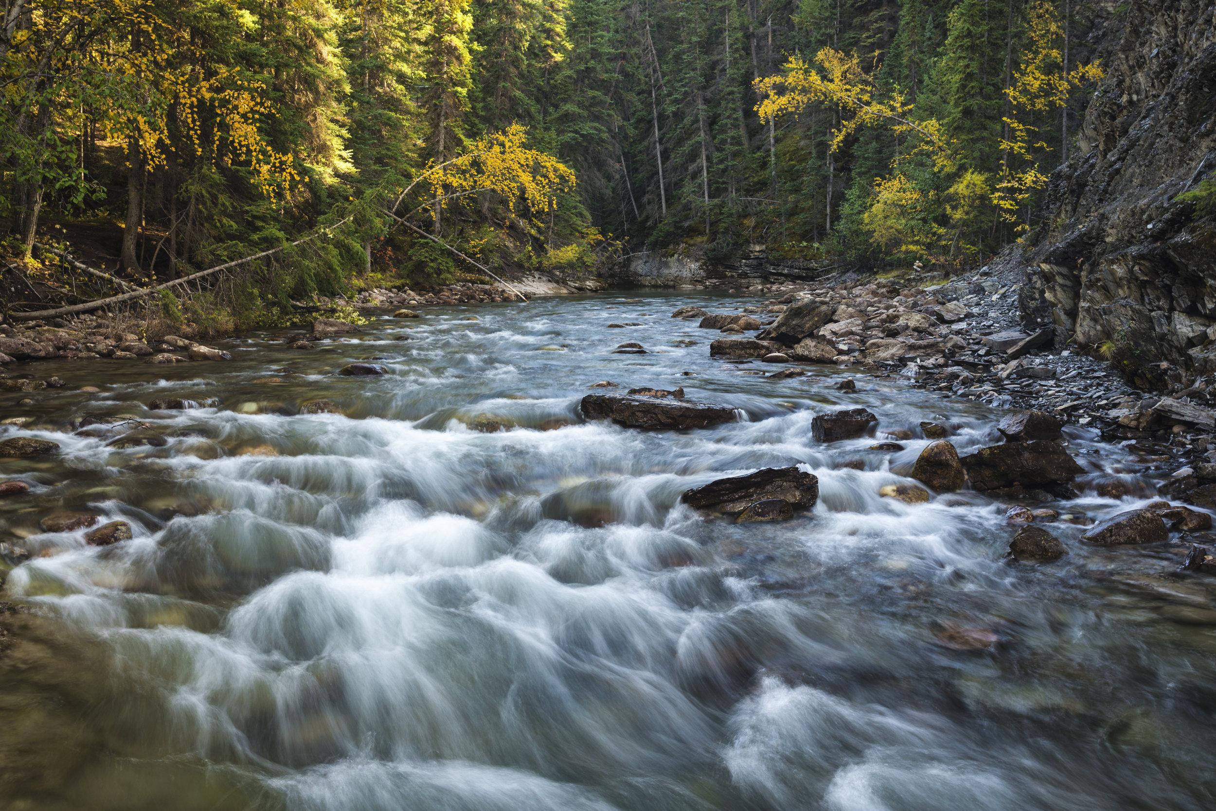 Autumn in Maligne Canyon, Jasper National Park