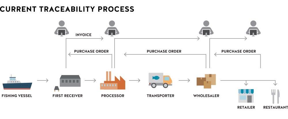 Traceability-process.jpg