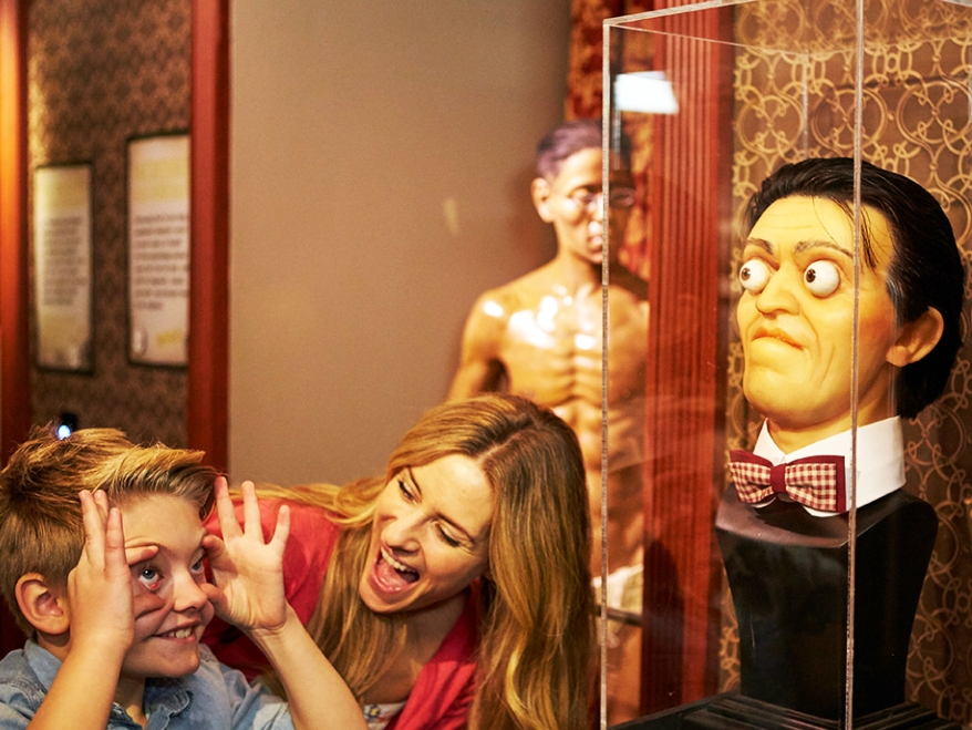 Ripley's Believe it or Not! - 234 W 42nd St, New York, NY 10036