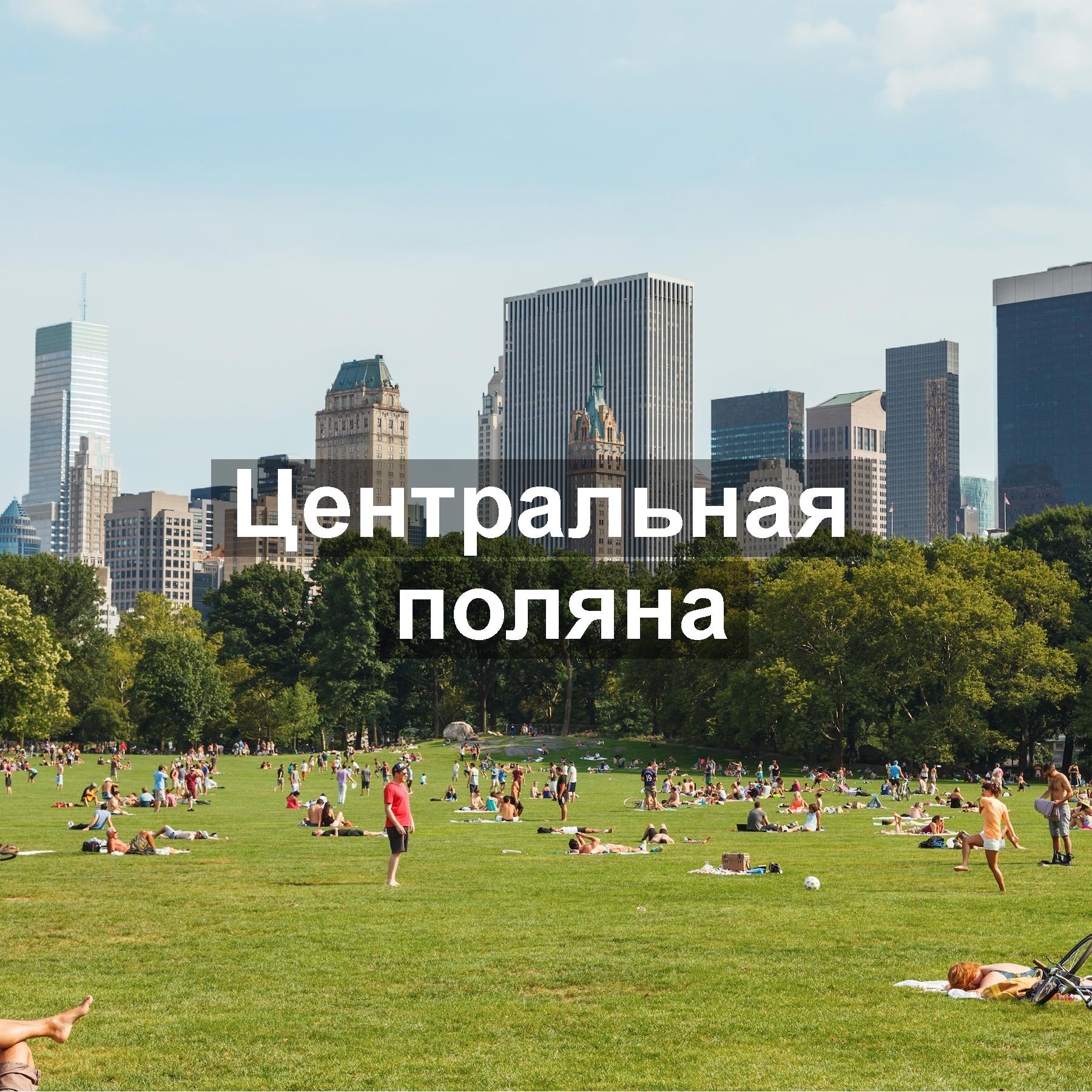 Центральная_поляна_центрального_парка_кинолокации_Ньюйоркгид_Иван_Федин.jpg