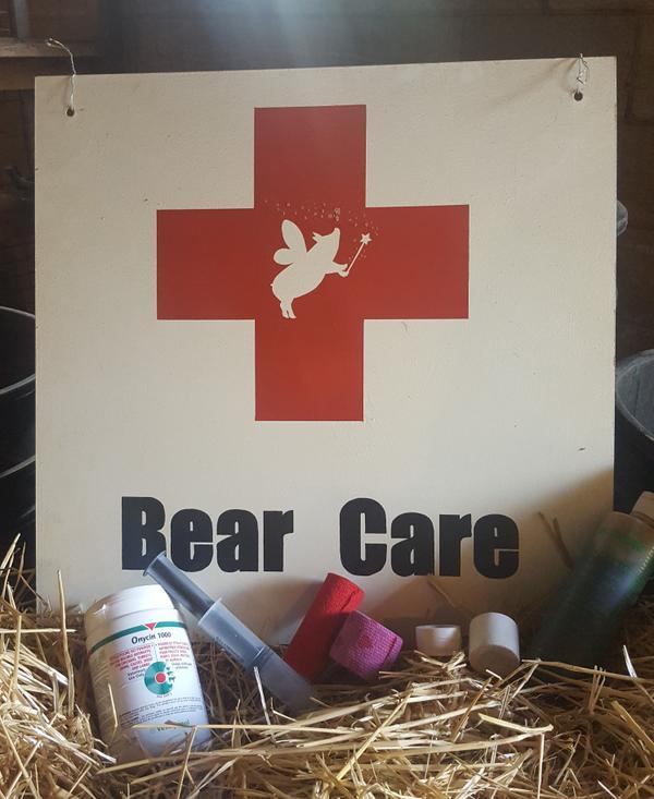 Bear_Care.jpeg