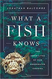 What a fish knows.jpeg