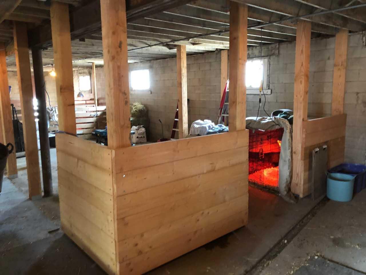 new stalls.jpg
