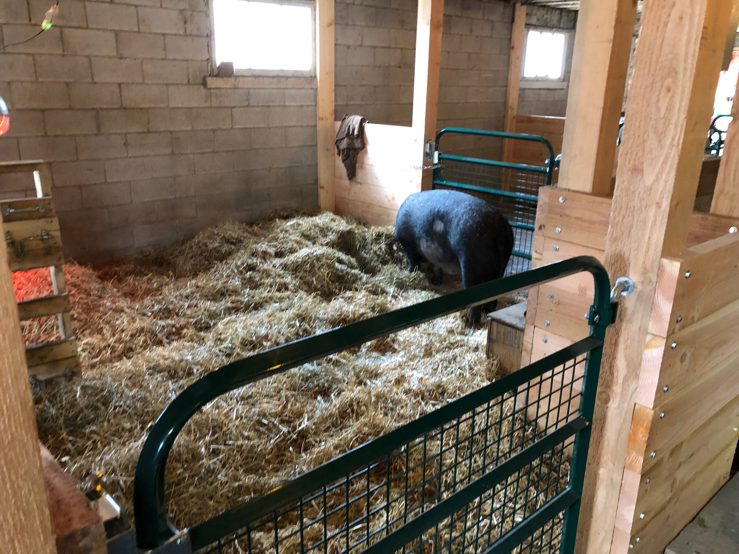 April checking out her new digs!