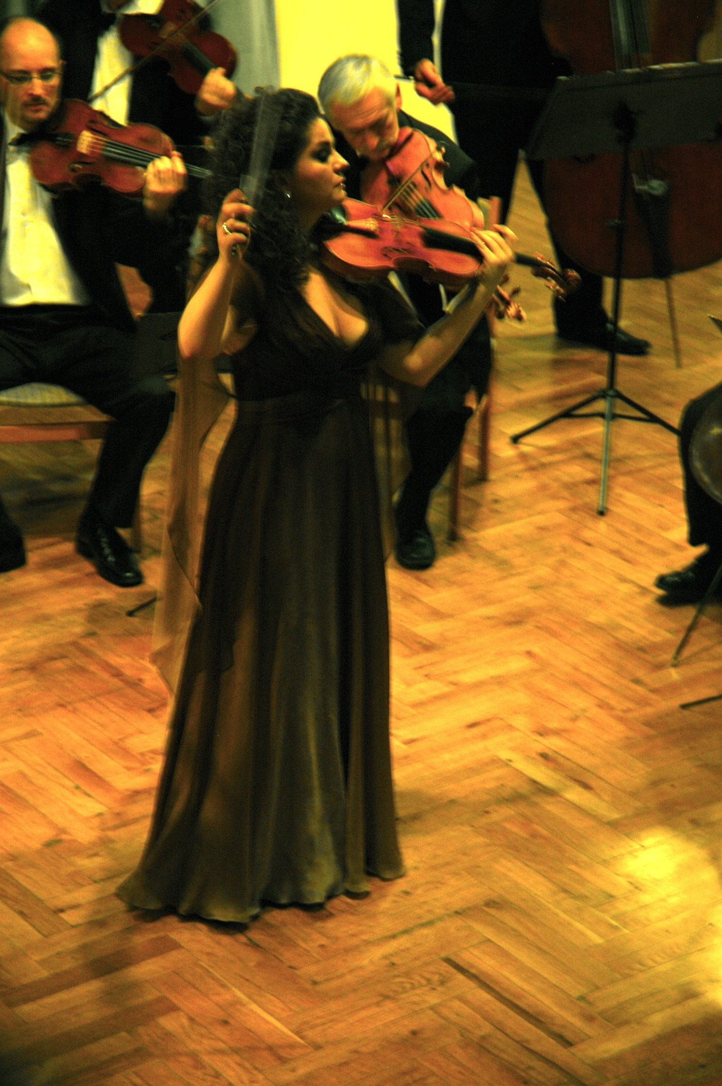 Soloist with the Franz Liszt Chamber Orchestra