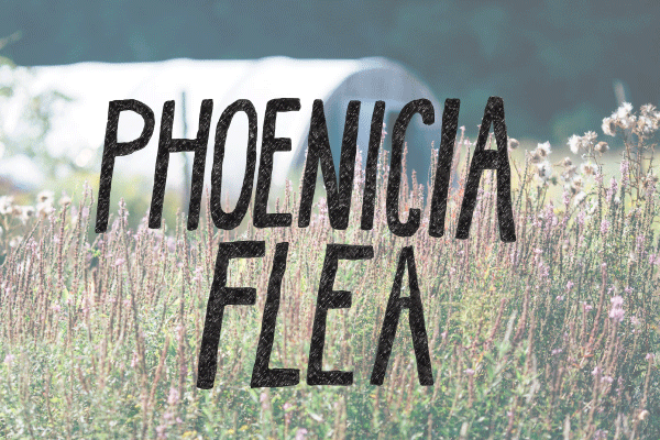 Phoenicia-Flea_Flyer.png