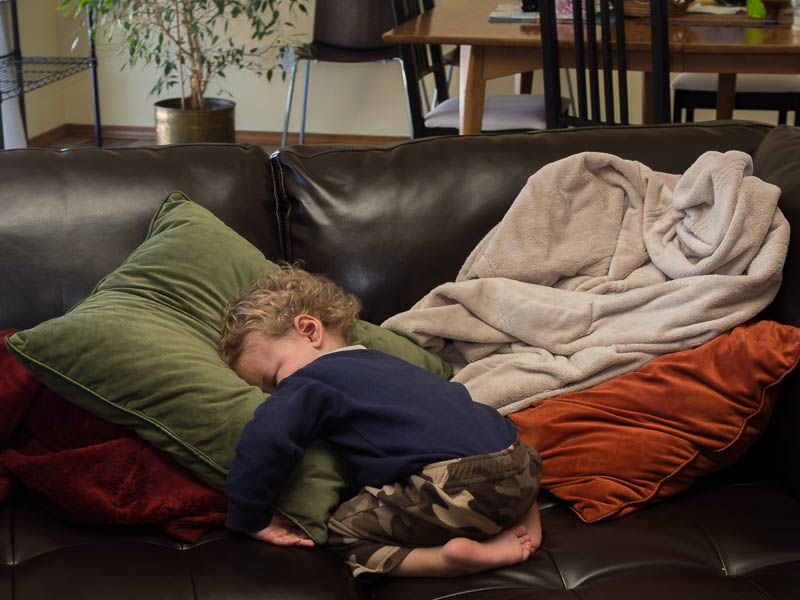 Owen - Sleeping - Fever - Couch