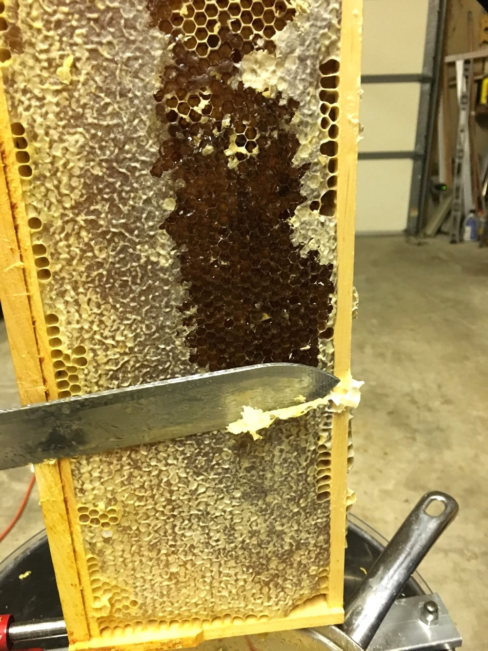 Here is one of the frames from our hives. Look at all of that wax and honey!!! It's the little things in life that make me happy, and a giant metal centrifuge full of honey is definitely one of them.
