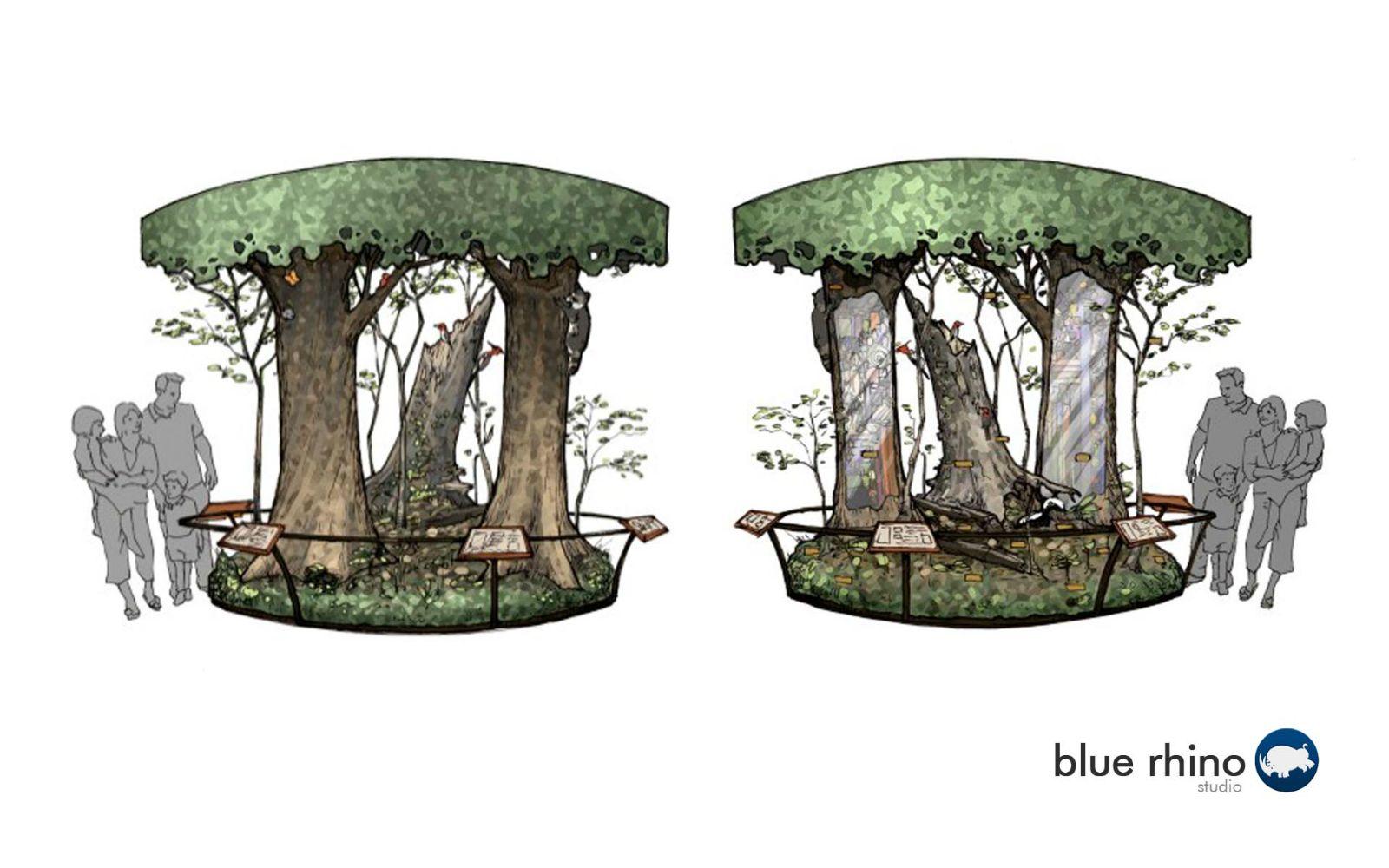 Interpretive Tree Exhibit Design
