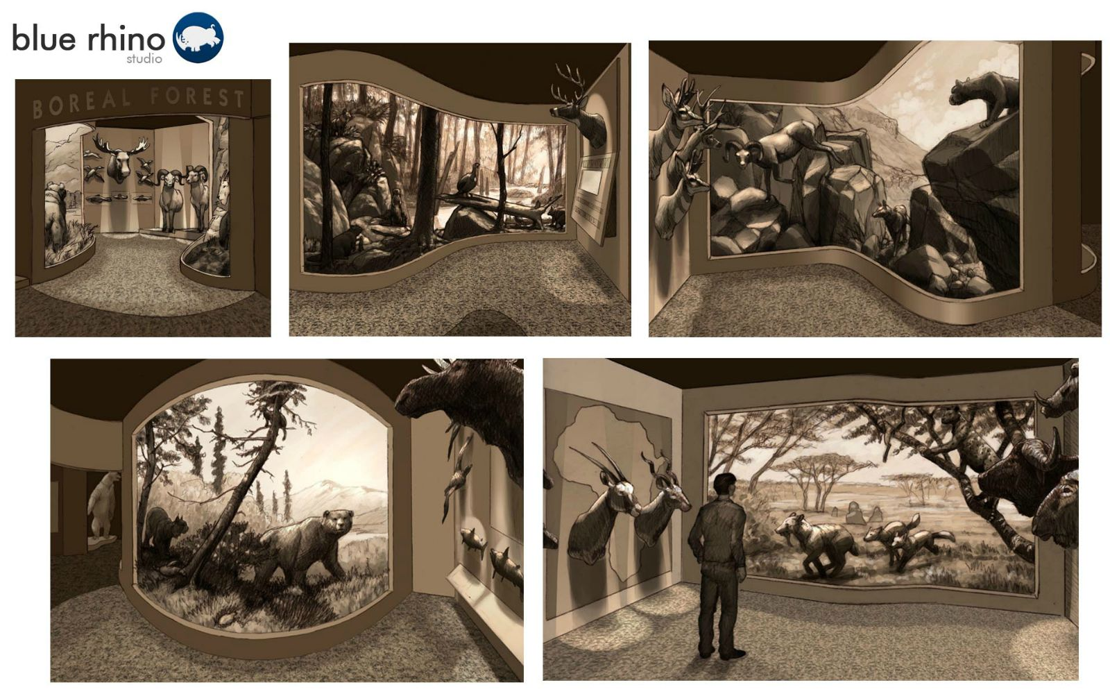 Traditional wildlife diorama design