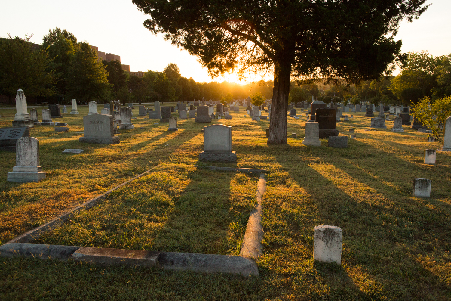The sun rises over the eastern-most section of the Congressional Cemetery in Washington, D.C.