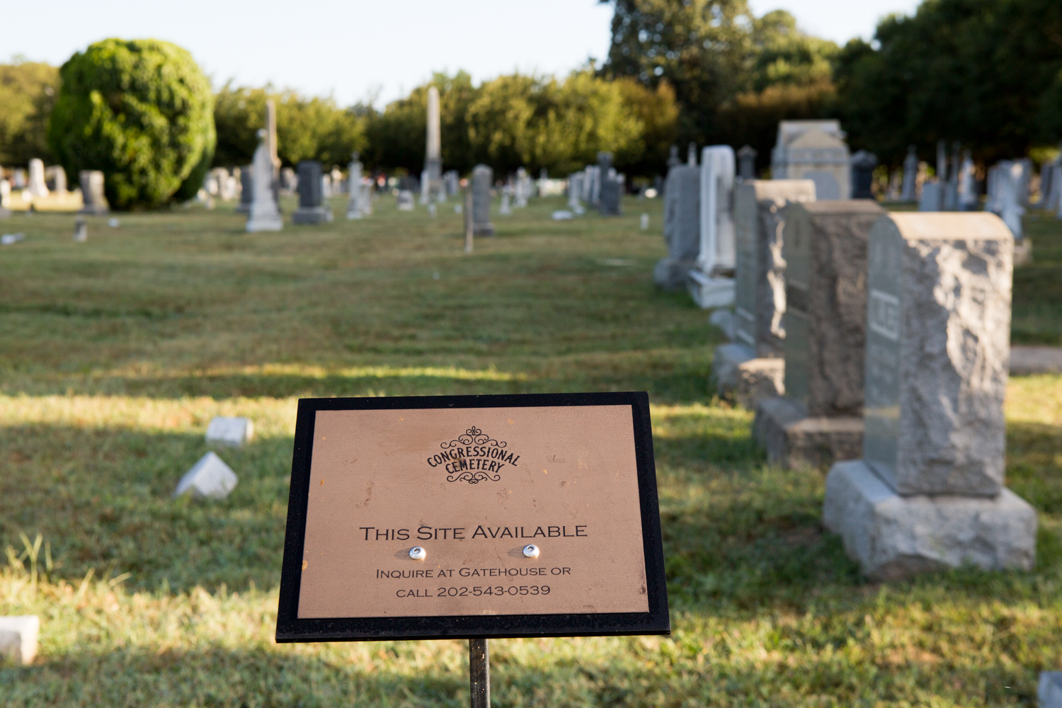 "In Washington, D.C., a sign stating ""This Site Available"" stands near a vacant site at the historic Congressional Cemetery."