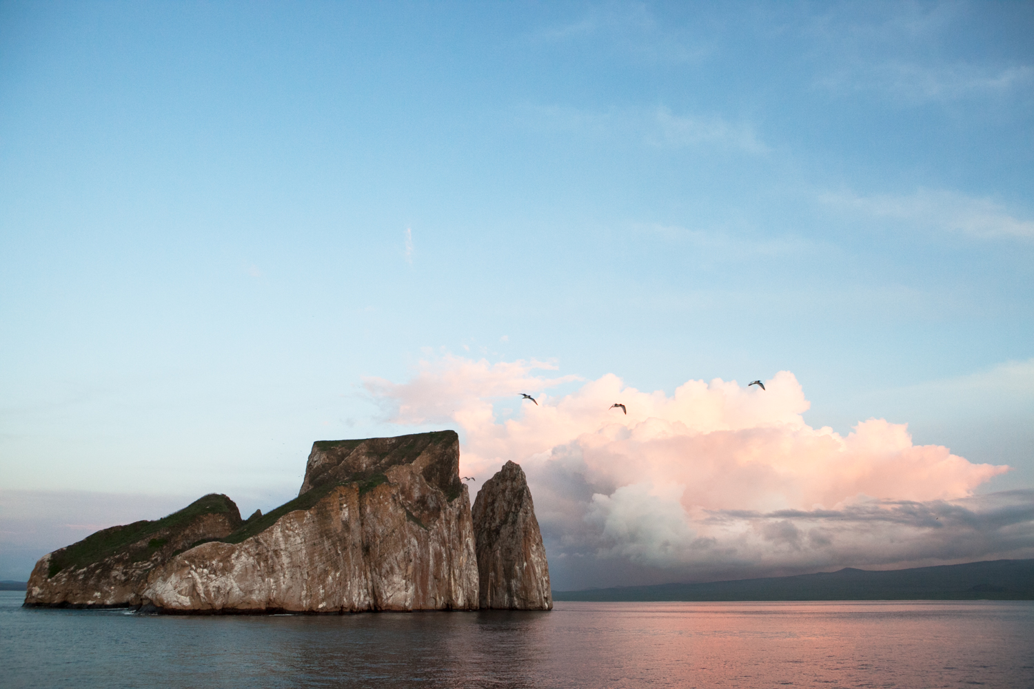 Birds fly around a rock formation in the Galapagos Islands.