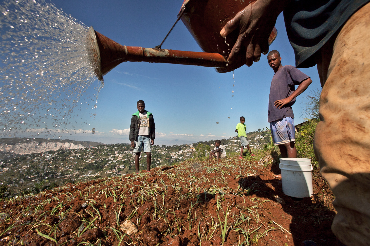 After delivering water by hand, farmers in Gramothe nurture crops that include onion, leek, sweet potato and cabbage. Yearly increases in the harvest have bolstered nutrition in the community, as well as incomes.