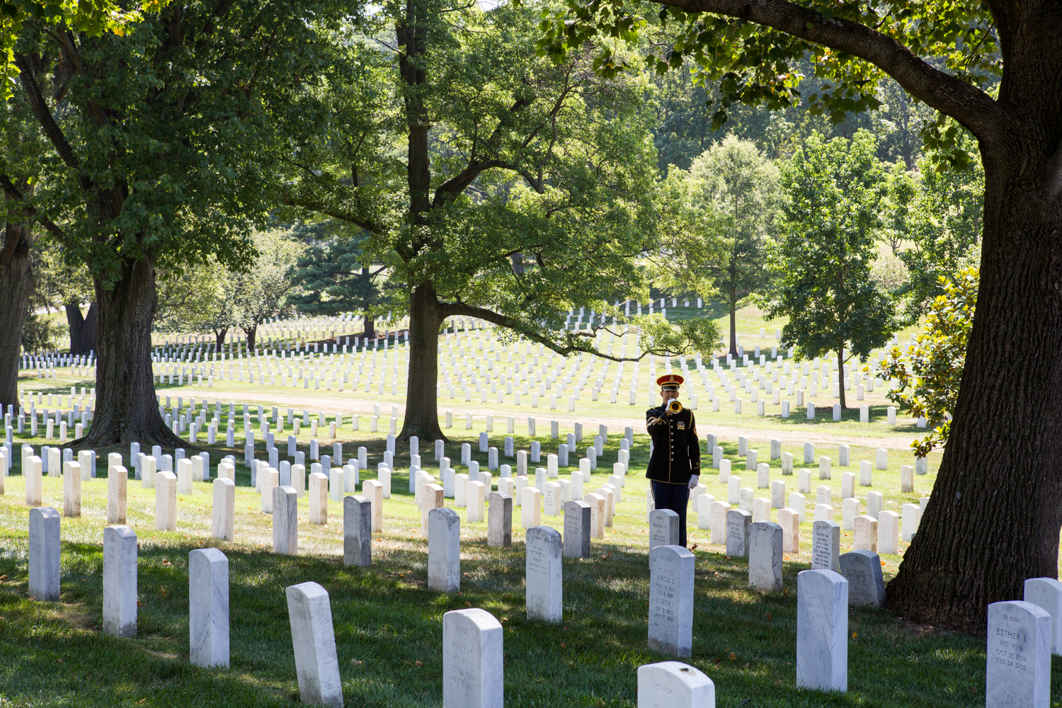 A lone bugler in Arlington National Cemetery