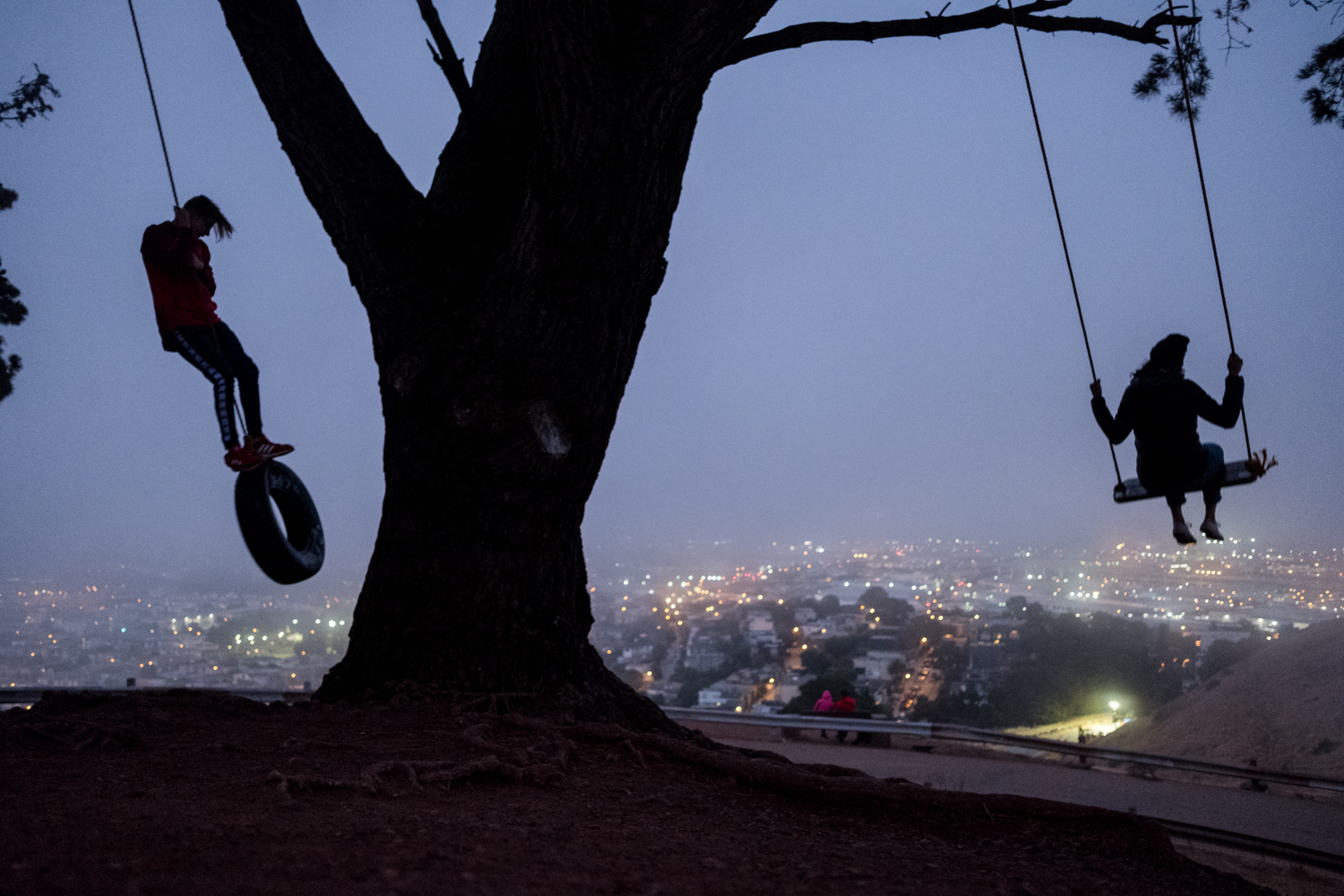 Two people swing under a tree above San Francisco at Bernal Heights.