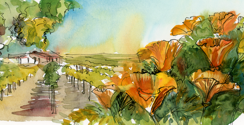 ILLUSTRATION FOR WEBSITE , RANCH LOS OLIVOS, Created for Articulate Solutions, Inc., Gilroy, California