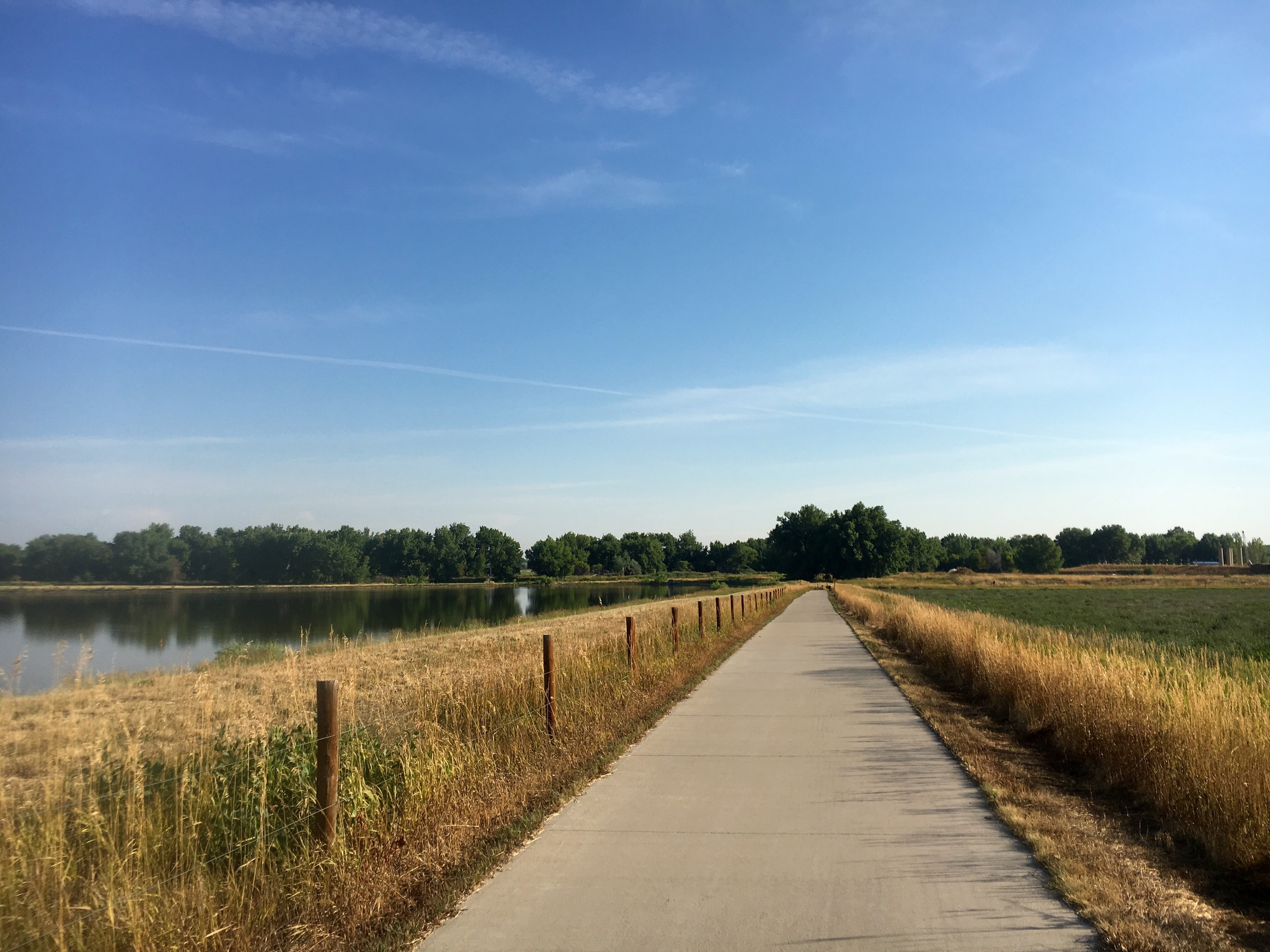 Summertime strolls