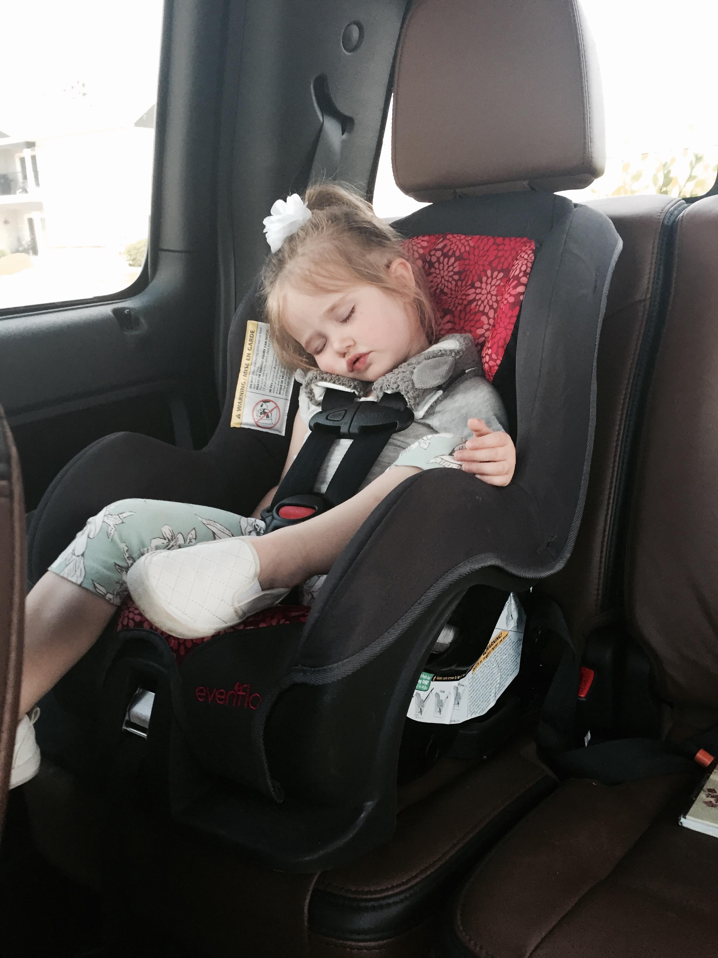 Car ride cat naps