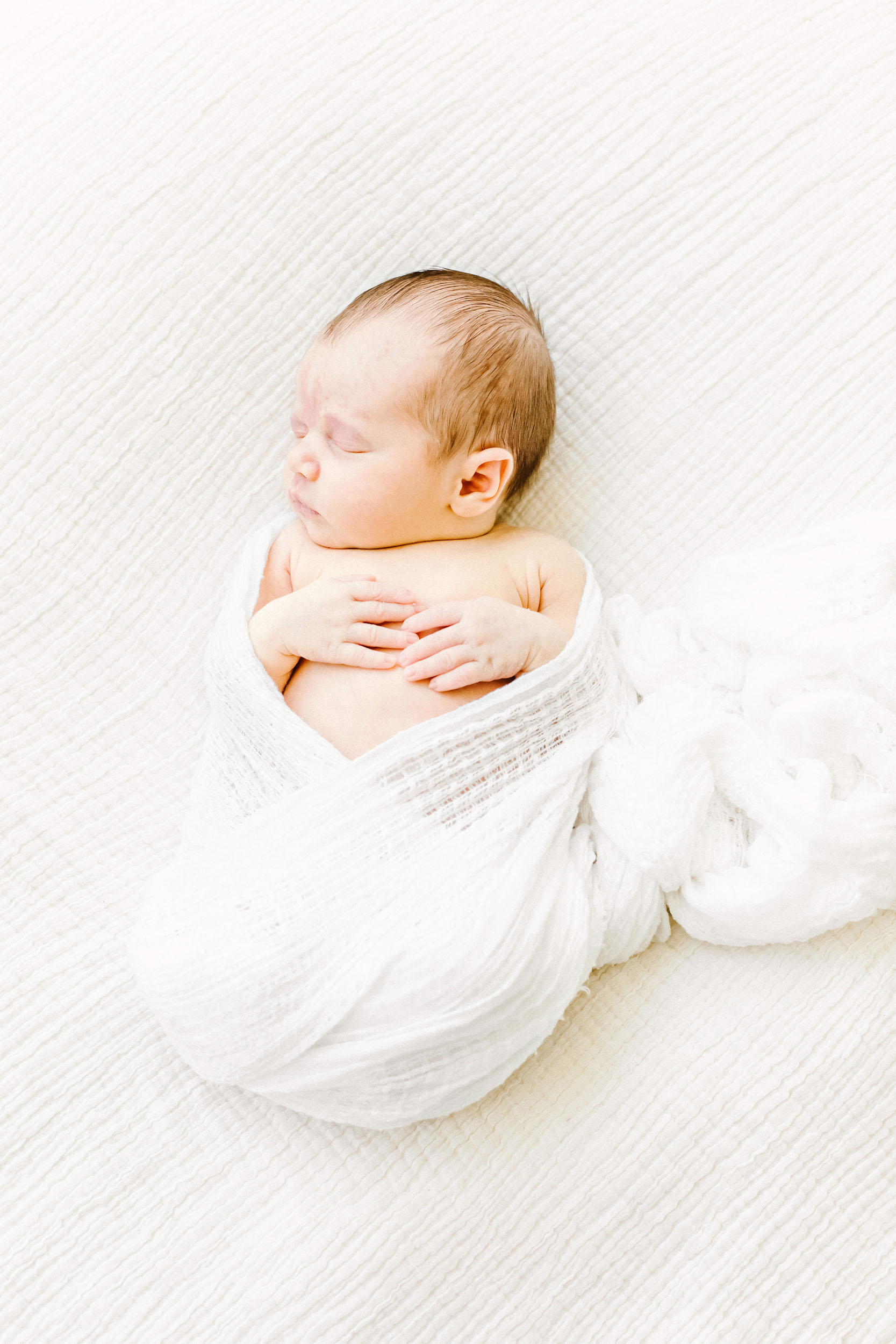 Chicago Newborn Photographer_Cassie Schott Photography_G_Family.jpg
