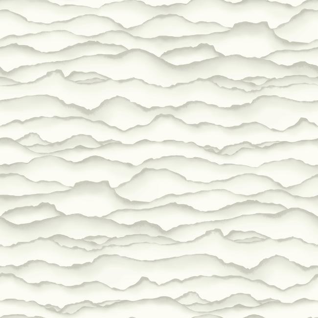 5 - Ashford White Singed Wallpaper (York).jpg