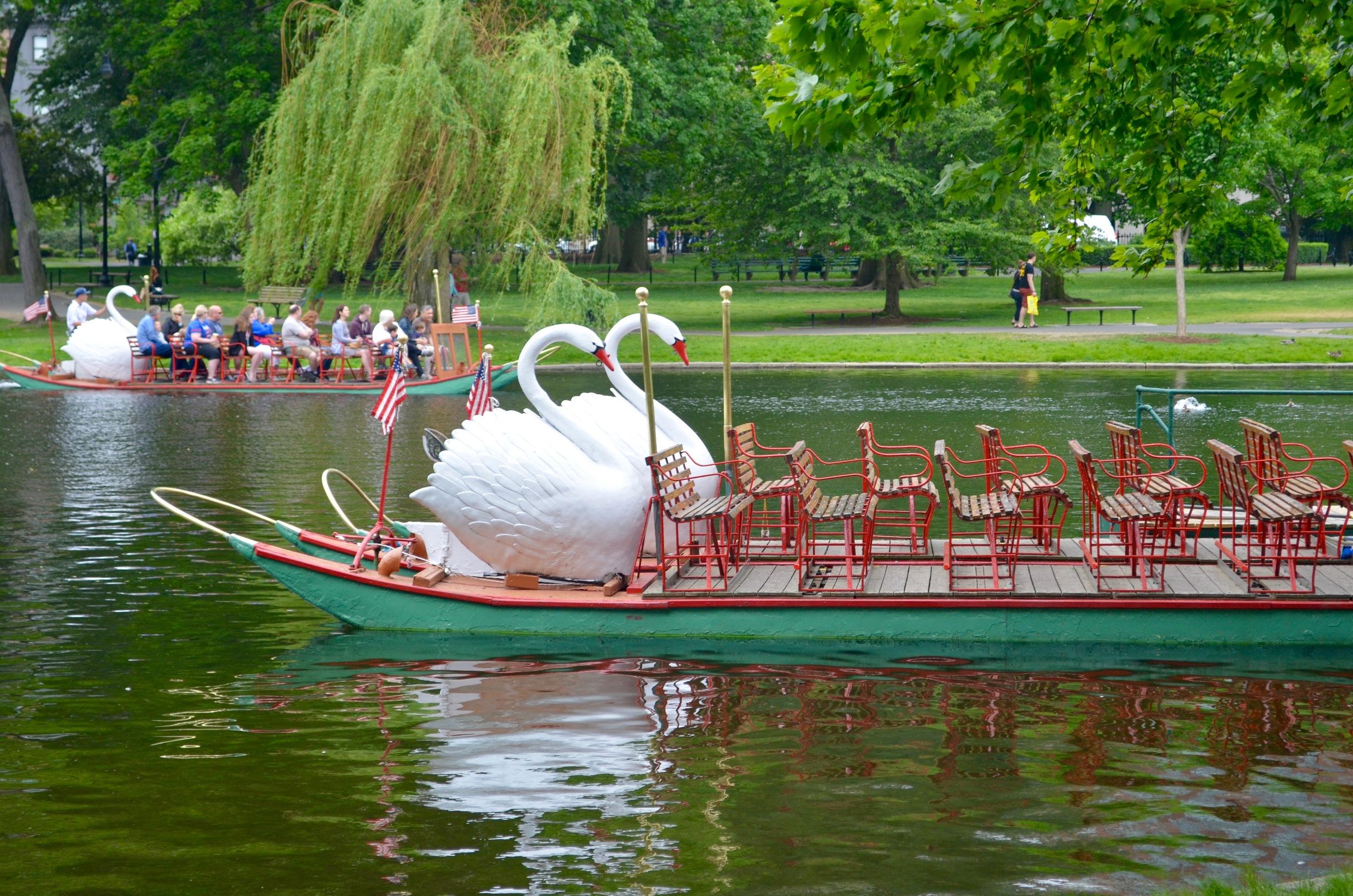 swanboats.jpg