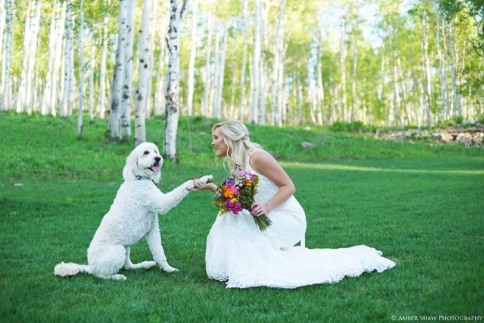 Aspen_Tree_Bridals_Utah_Wedding_Photographer_0019.jpg