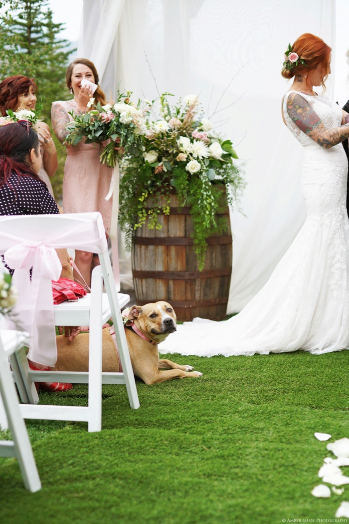 Louland_Falls_Vegan_Wedding_Utah_Photographer_0041.jpg