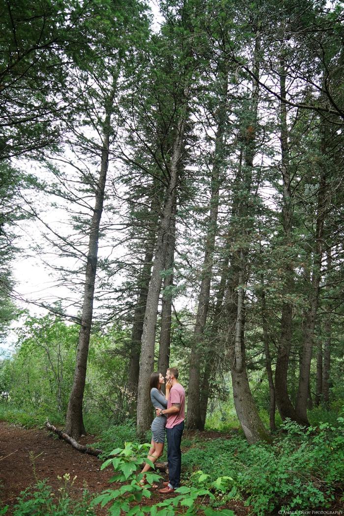 Summer_Mountain_Engagement_Look_Utah_Wedding_Photographer_0013.jpg