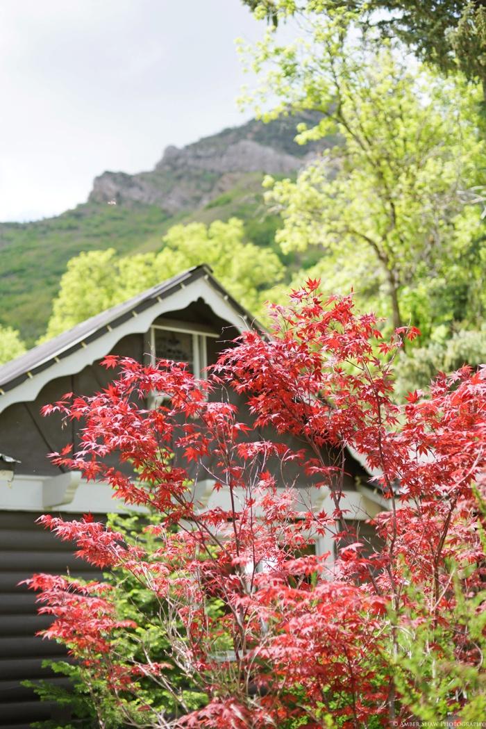 Millcreek_Inn_Wedding_Utah_Photographer_0002.jpg